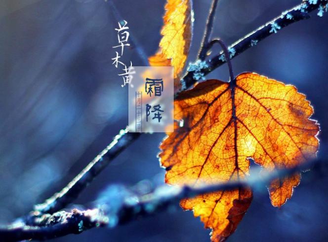 2018霜降祝福语问候语澳门威尼斯人在线娱乐