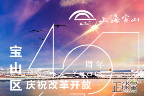 _____年,国务院批准撤销宝山县、吴淞区,成立新的宝山区。
