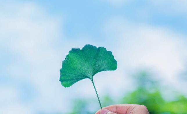 午安心语感悟人生经典心情说说:余生很长,爱自己是首选。