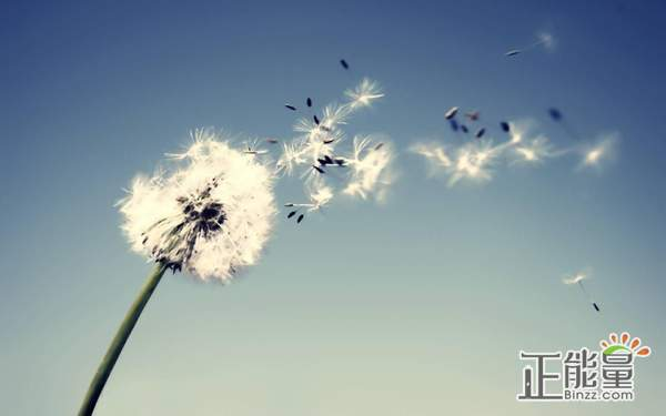 对生活看淡看开的心情说说:平凡之路,无需奇迹