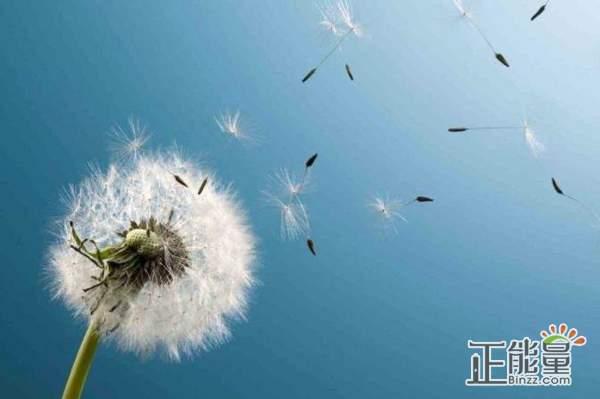 感悟人生的经典简短说说:余生哪怕大风大浪,也都携手前往