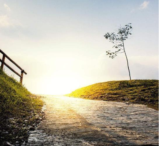 早晨励志语录正能量一句话:保持头脑清醒,不要被现实所飘飘然