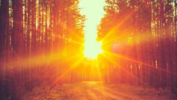 人生感悟的美文:秋天的黃昏