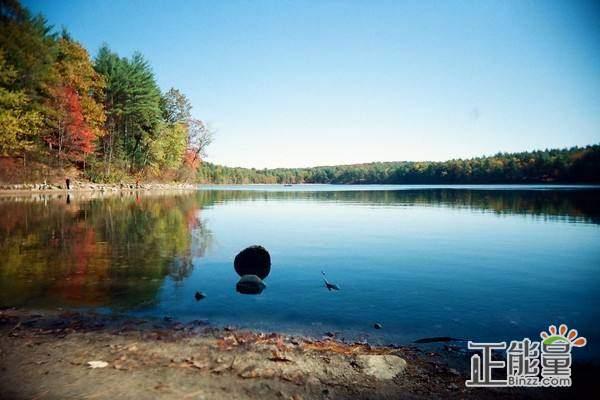 《瓦尔登湖》读后感:大自然的散文