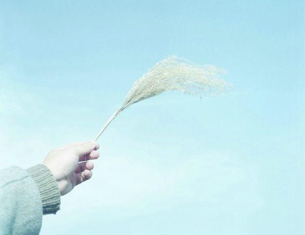 关于勇气的心情说说:做决定的过程是艰难的,但结果却是豁然的。