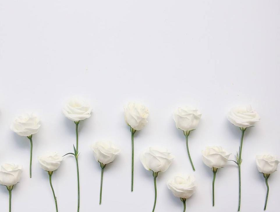 心情说说心酸的句子:别让自己以后有后悔的事,不值得