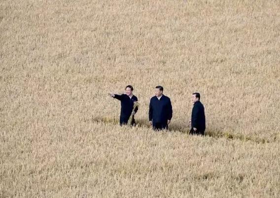 习近平总书记东北振兴考察重要指示精神宣传标语大全