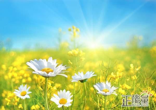 青春励志名言经典句子:千种人生,万种活法。遵循本心,每一种都是精彩!