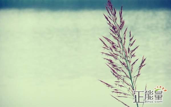 感悟人生的經典心情說說:時間久了,就不會在像以前那么想念了