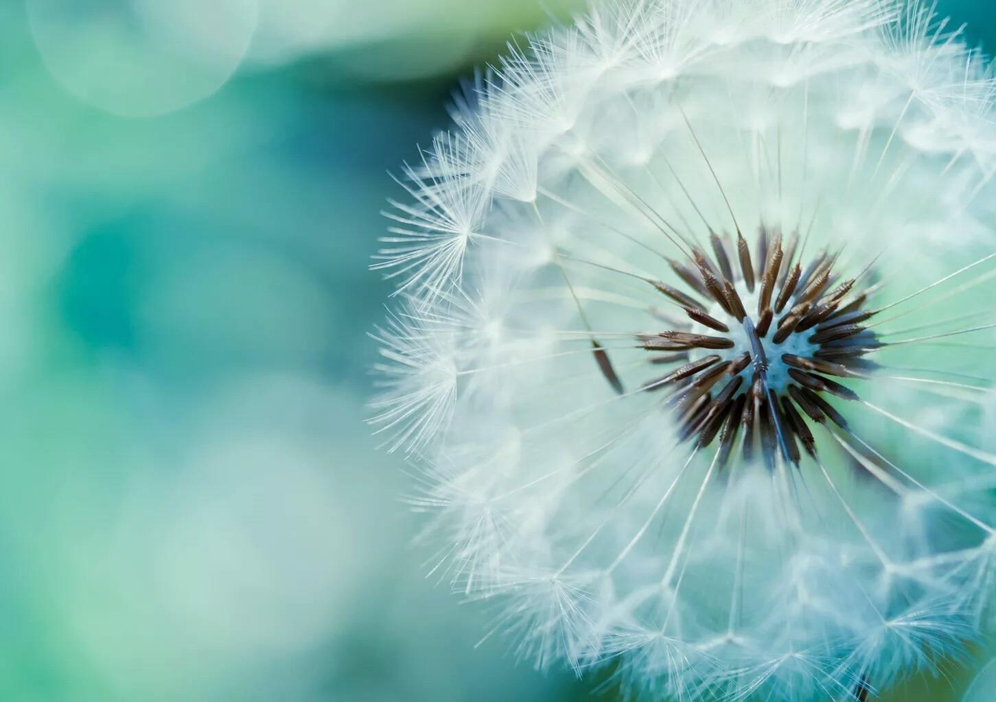 人生追求与理想的励志语录:每个努力拼搏的人,都是最可爱的人