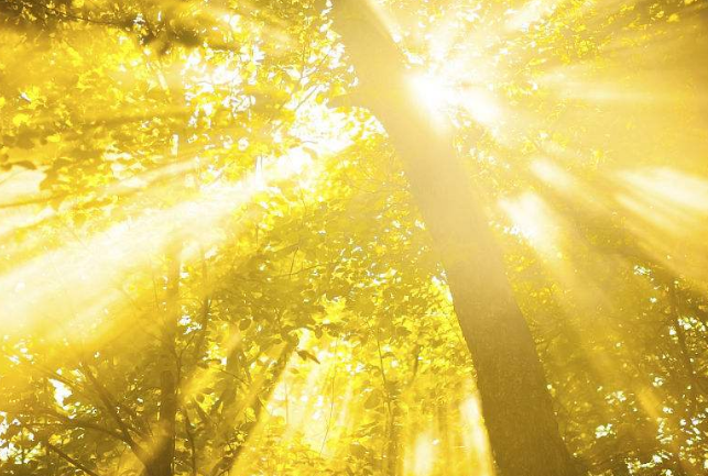 10.3早安心语励志正能量句子语录:今天也要加油哦!