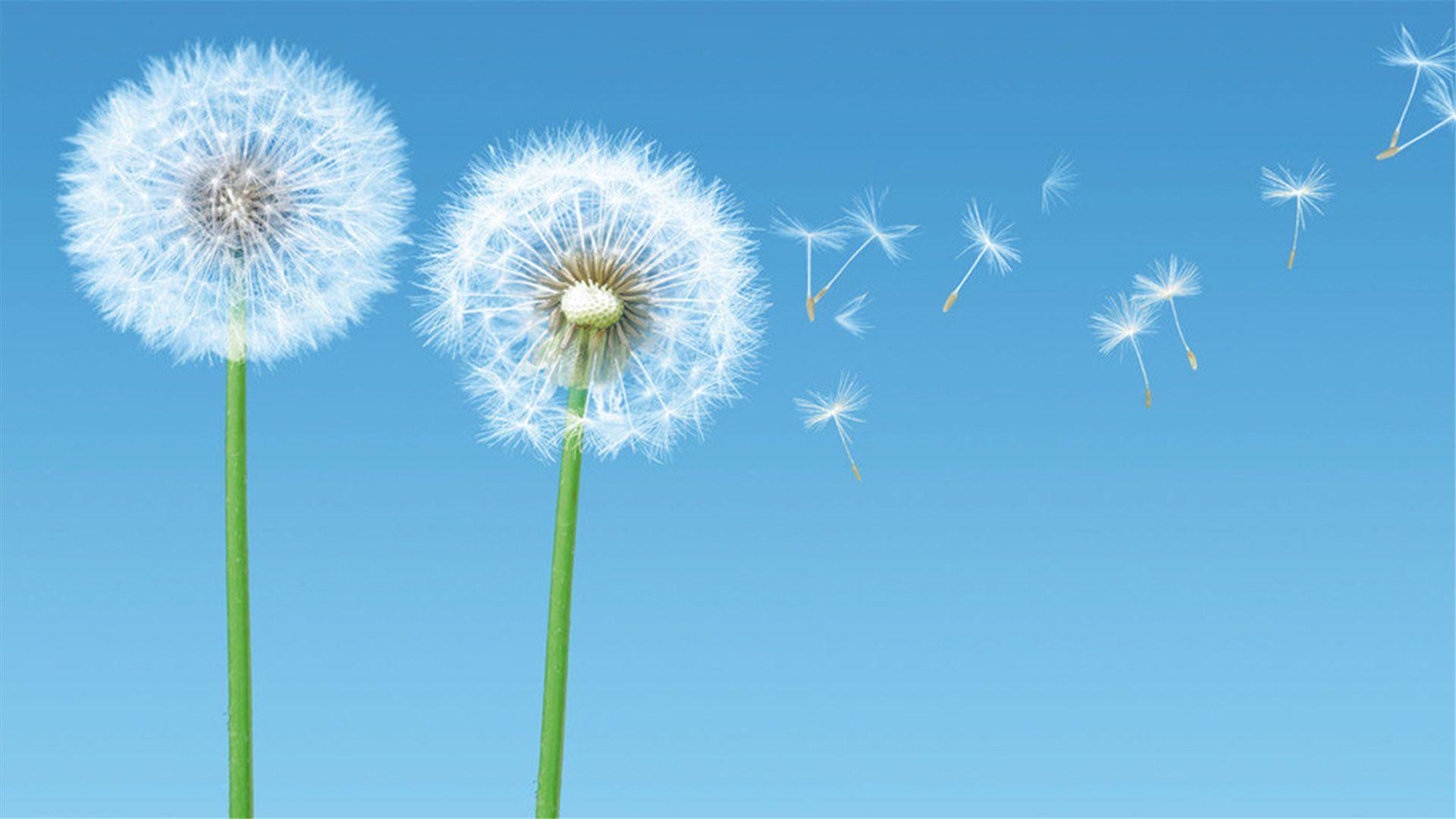 鼓励实现梦想的励志语录:只剩一条路了,那就只能背水一战
