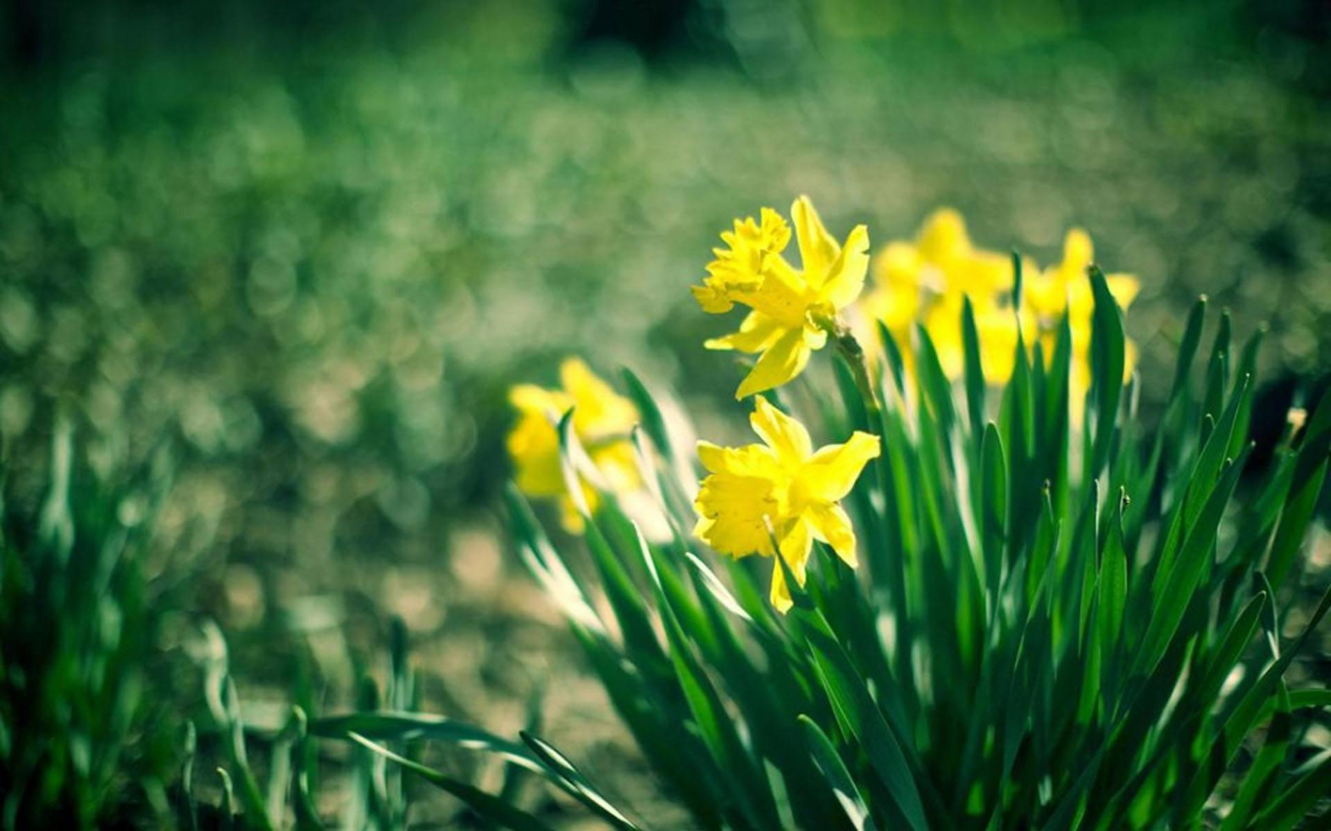 人生不妥协的简短正能量说说:坚持心中执念,不管他人是否理解