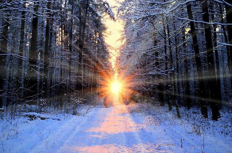 关于冬日中的暖阳散文