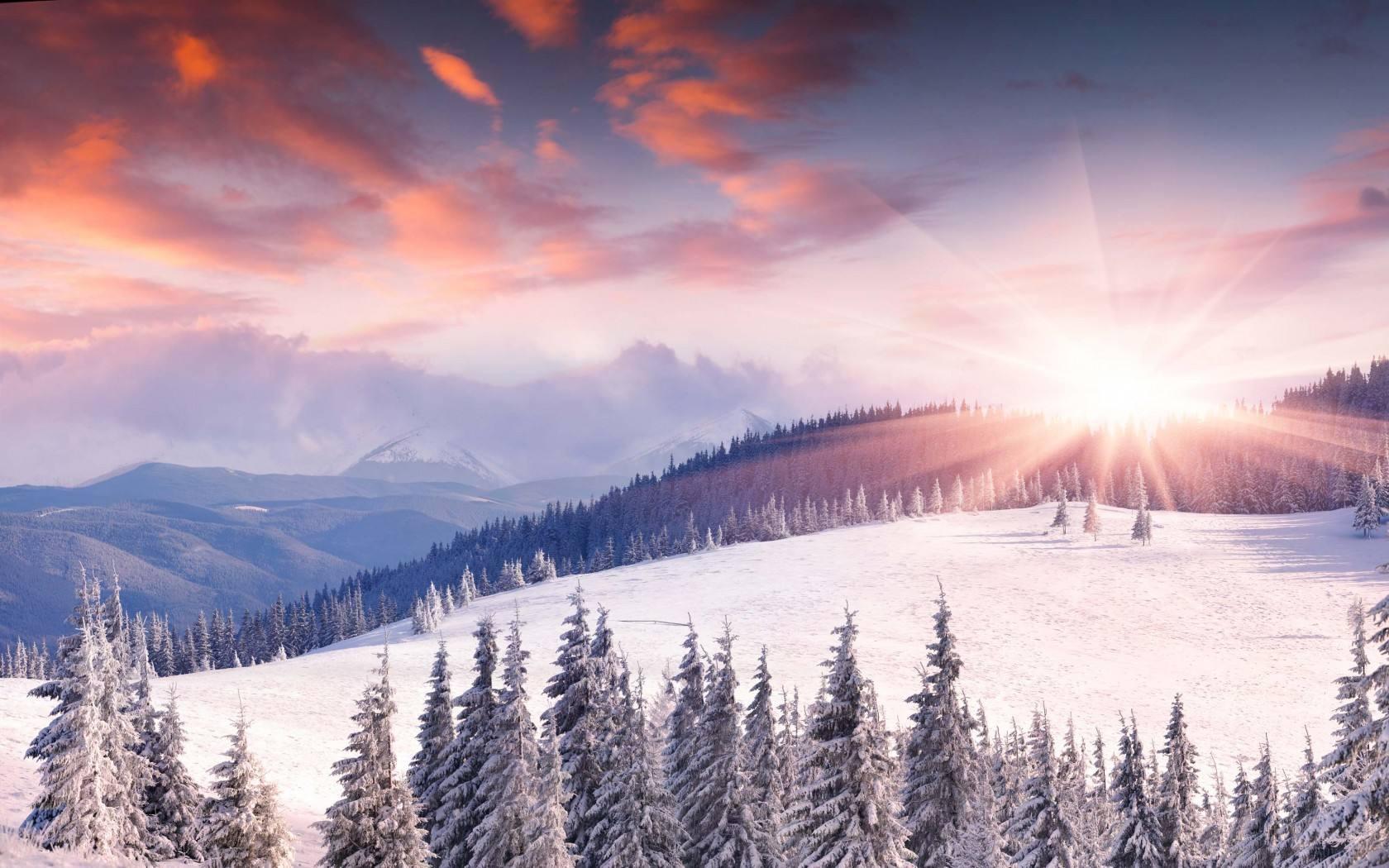 冬日里的一抹暖阳散文