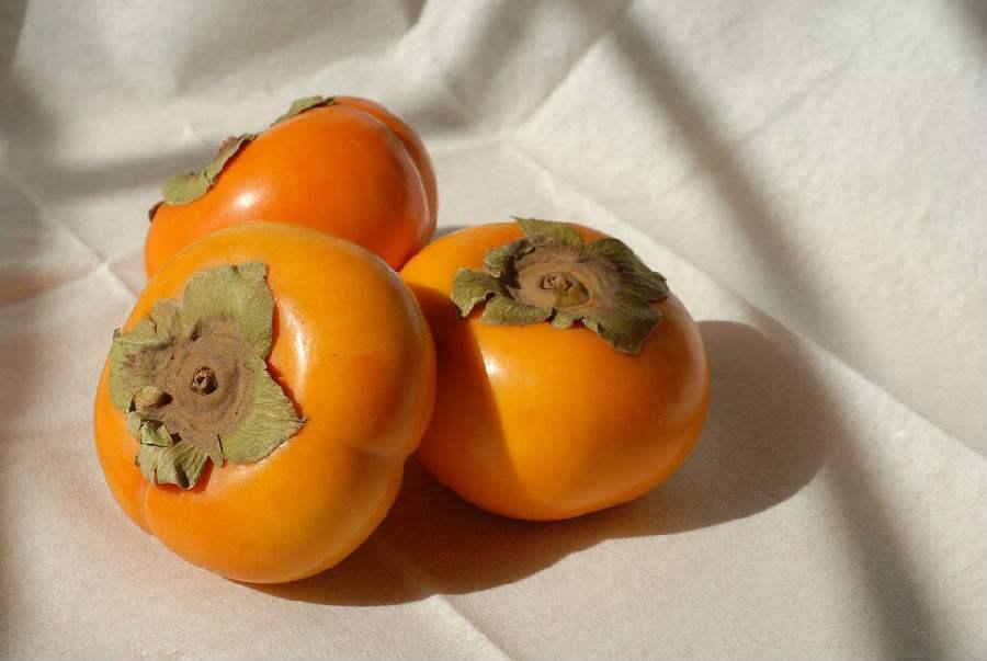 关于童年记忆中的柿子散文