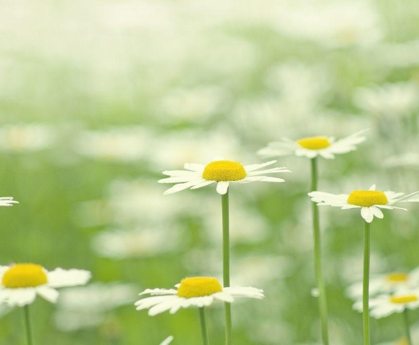 人生坚持梦想的正能量语录说说:感谢那些年陪我们一起走过的人和事