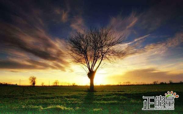 人生旅程感悟生活语录欣赏:永远在路上,永恒是孤独