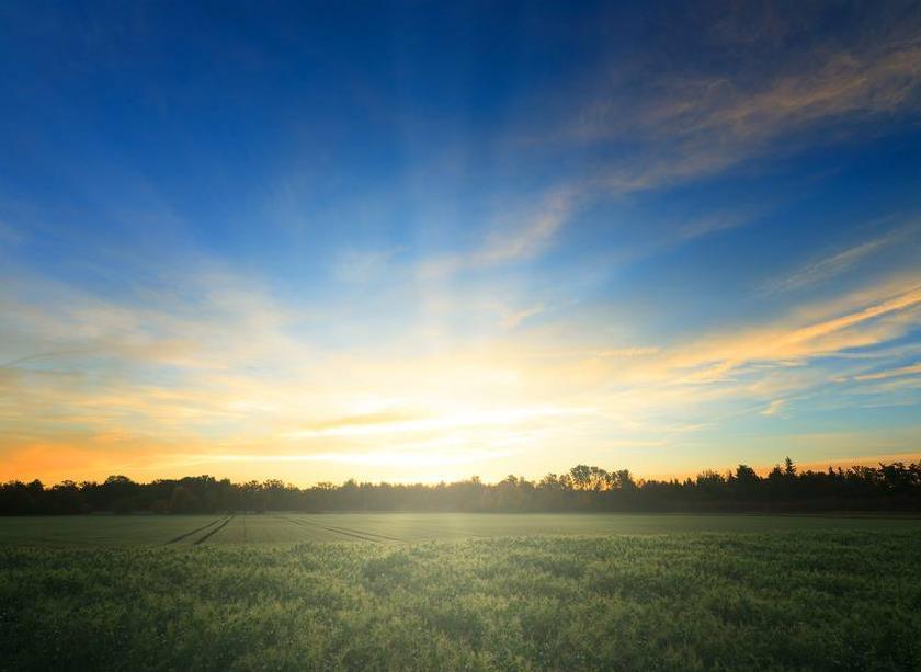 治愈自己的情感励志语录:未来还很长,阳光一直都在