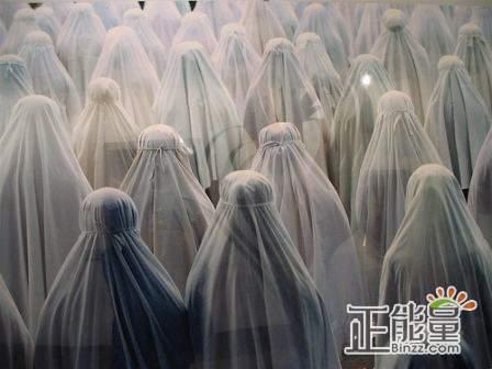 穆斯林的葬礼读后感:撕破的美
