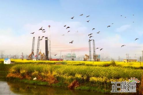 """采油管理区""""一识别二排查三落实零污染""""中""""三落实""""是指。A、落实环保"""
