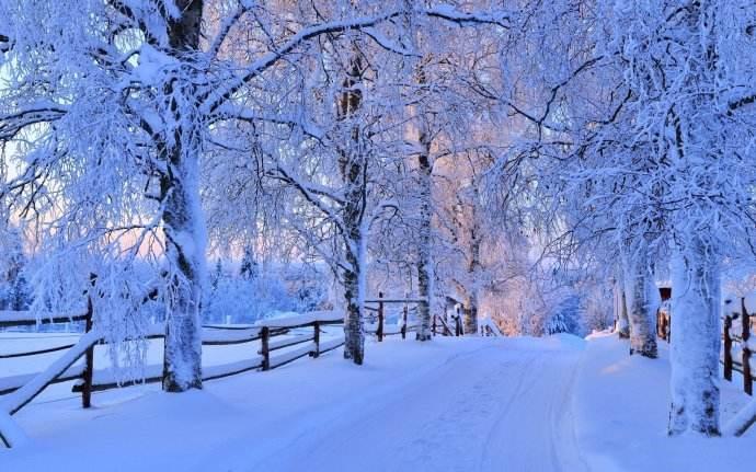 描写冬日落雪的优美散文