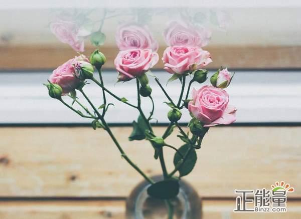 成年人的爱情伤感语录说说:天亮以后,答应自己要努力生活