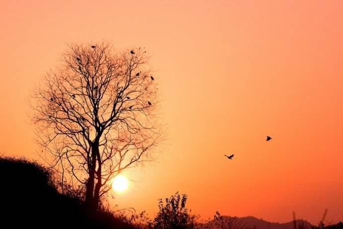 对于故乡回忆的散文:生生死死的乡土