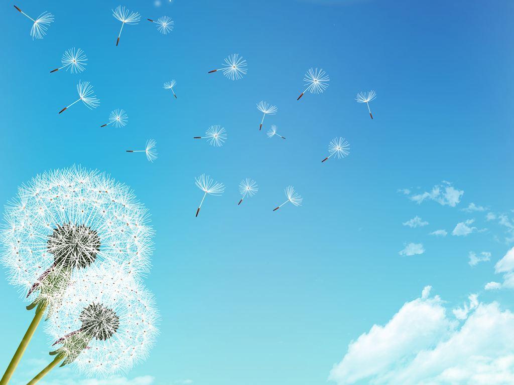 坚持奋斗努力追逐梦想的正能量说说大全