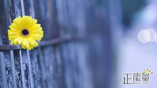 渴望被理解的心情说说情感语录:不知向谁求助,我怕自己走错路