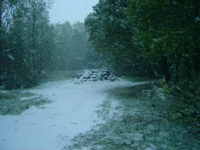 关于雪的记忆优美散文