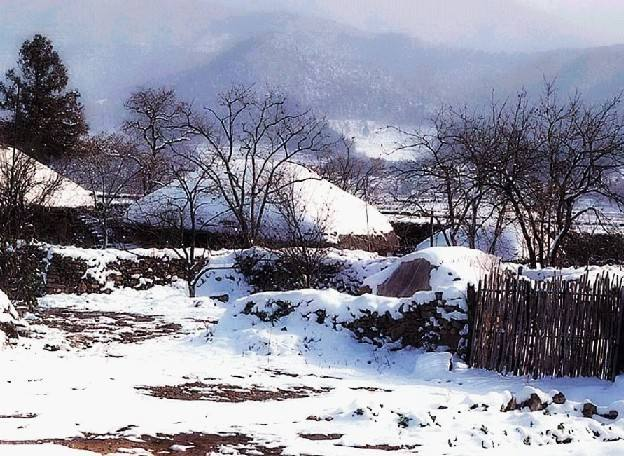 关于乡村的冬天散文欣赏