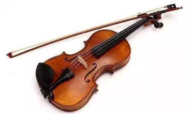 关于小提琴小学作文500字记叙文