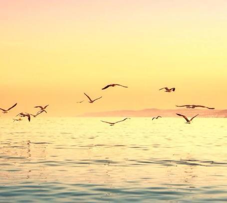 感悟生活意义的正能量简短一句话:人的一生,谁没有跌倒的时候