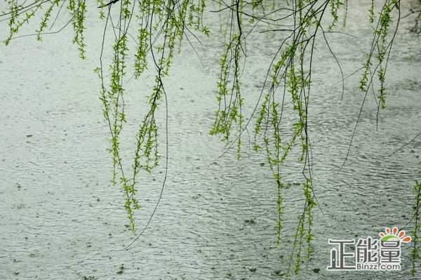 随笔散文欣赏:春天的雨声
