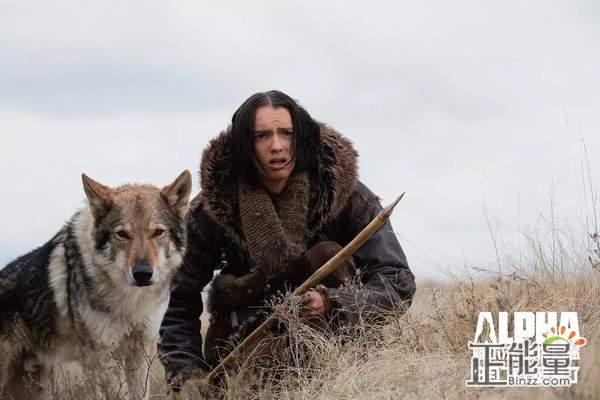 阿尔法:狼伴归途观后感精选900字