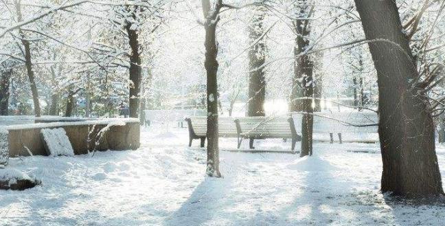 描写冬天的作文范文5篇