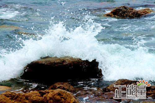 小学生读浪花和礁石读后感