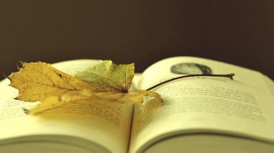 关于人生的优美散文:来日方长并不长