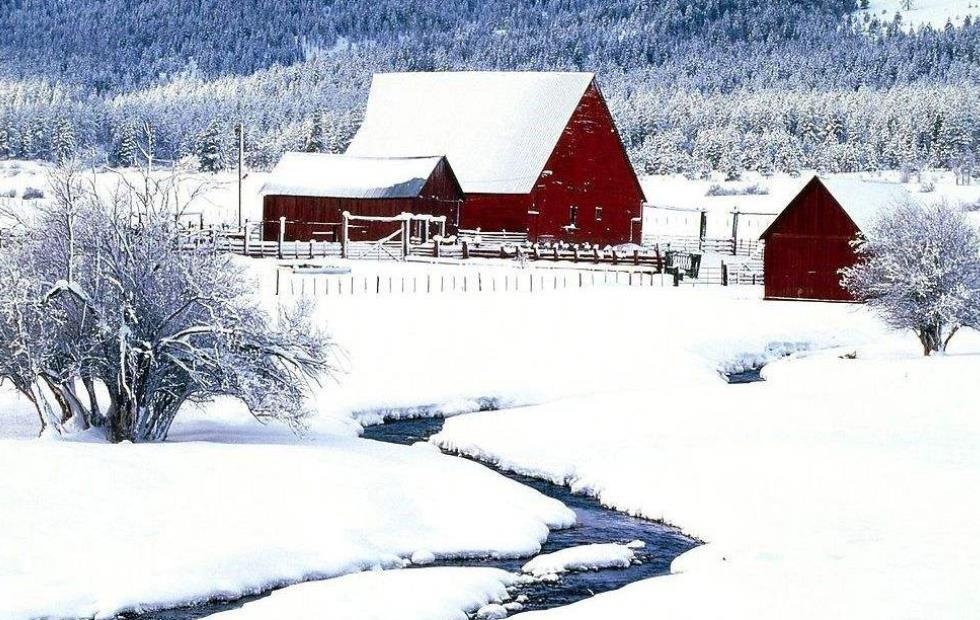 关于冬天的抒情散文:与雪儿的约会