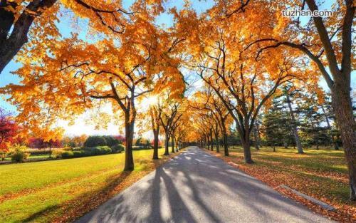 关于秋天的优美散文:繁秋本色