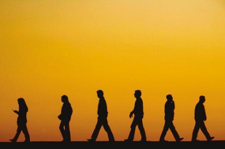 人生感悟文章:走好自己的人生路