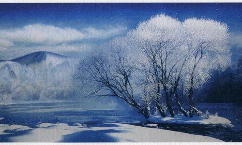 关于冬雪的抒情散文:年年雪里