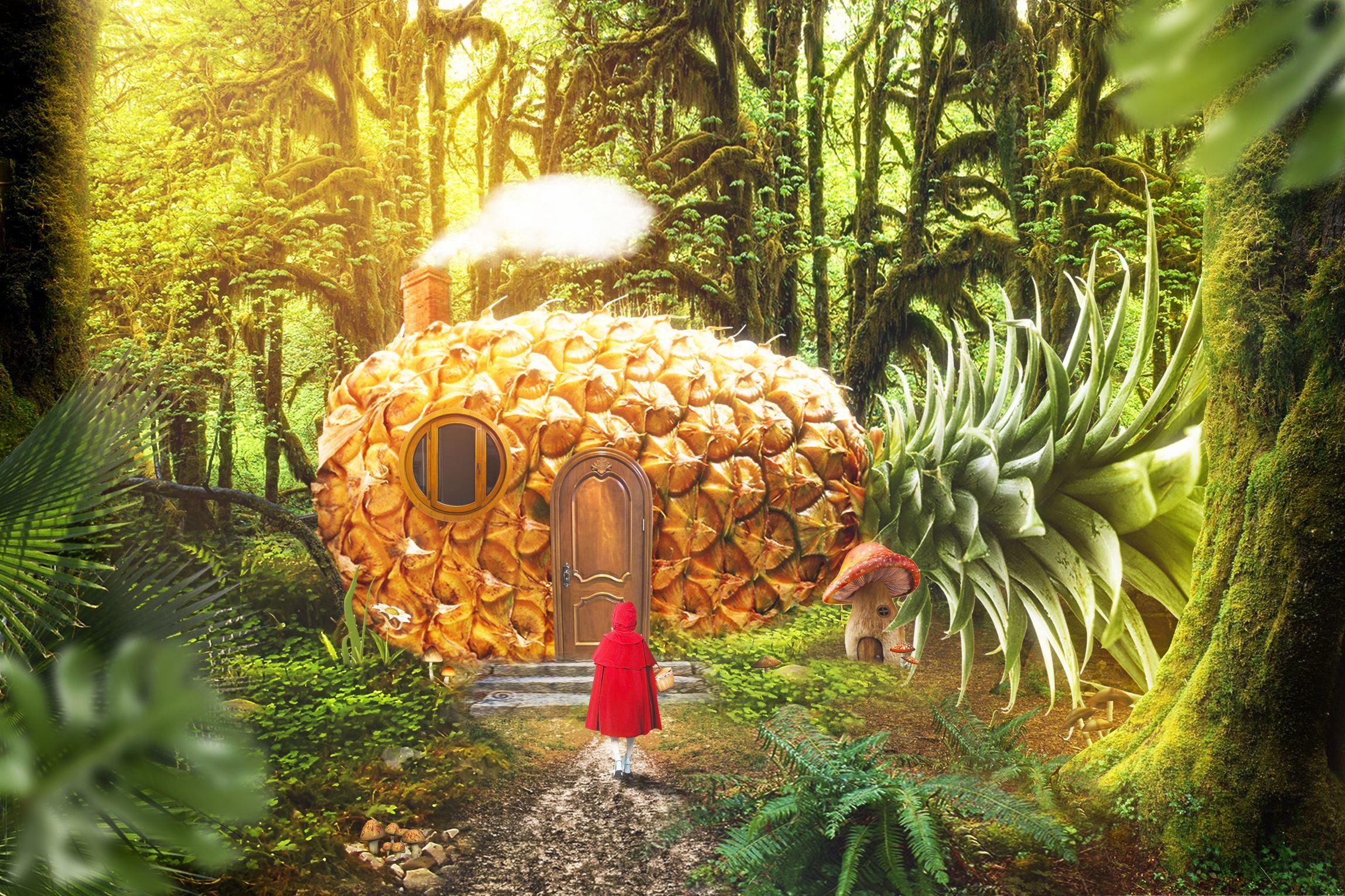 孩子睡前童话故事:不洗澡的王国