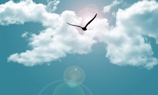正能量梦想积极向上的情感语录:凝聚正能量,放飞心梦想