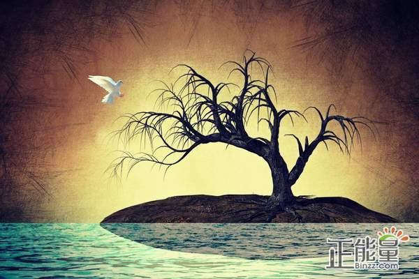 爱情伤感说说心累了的情感说说:就此别过,各自安好