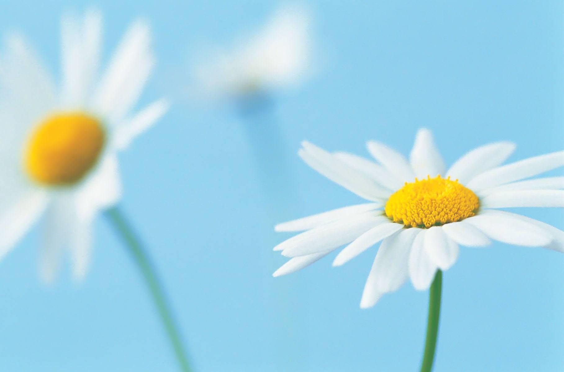 不给人生留下遗憾的正能量情感说说语录欣赏