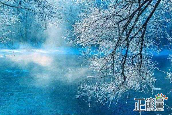 描写冬至的散文1000字
