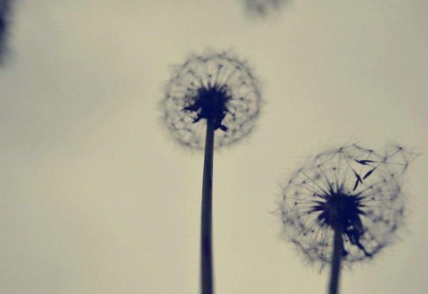 人生迷茫找不到方向的句子内心麻木心累说说大全