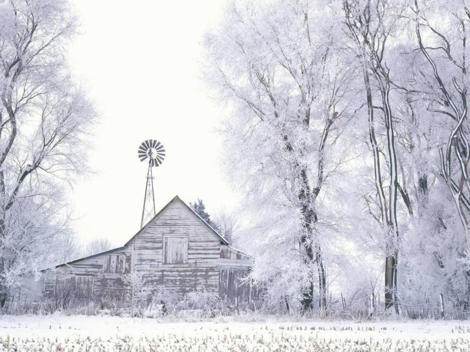 关于冬天的优美散文欣赏:走笔冬天